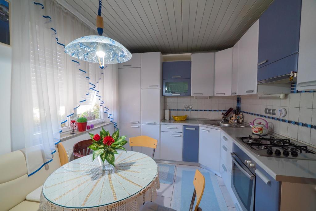 A kitchen or kitchenette at Apartma Franko