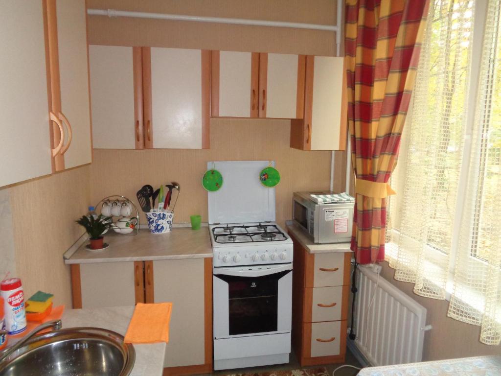 Кухня или мини-кухня в Apartment on Vavilovykh