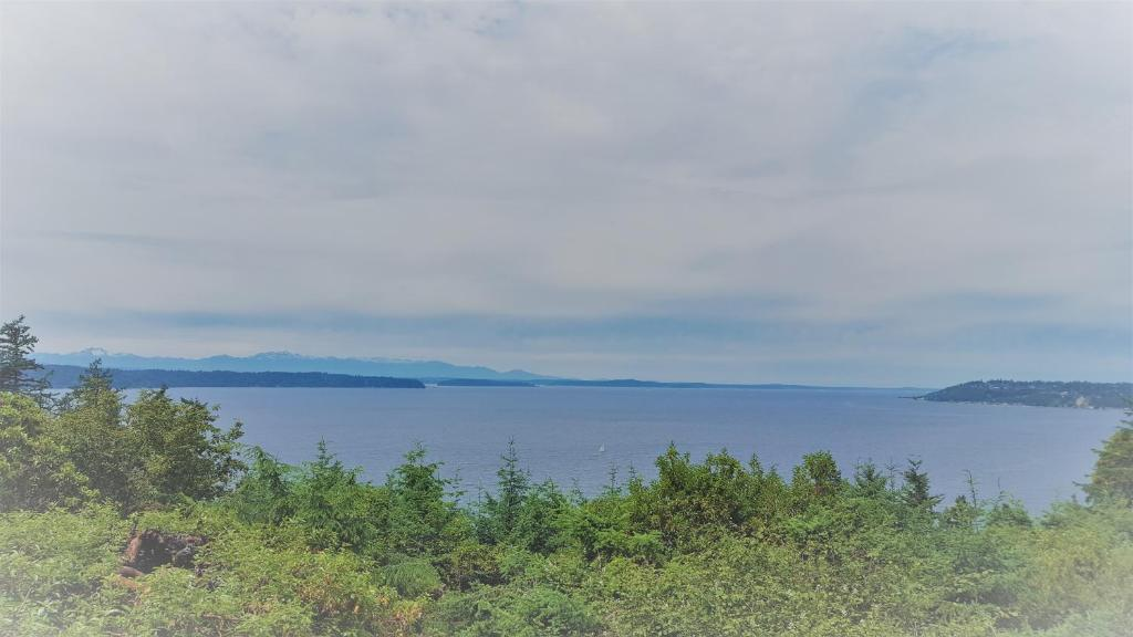 Island View-Spectacular view of Puget Sound and the Olympic Mountains