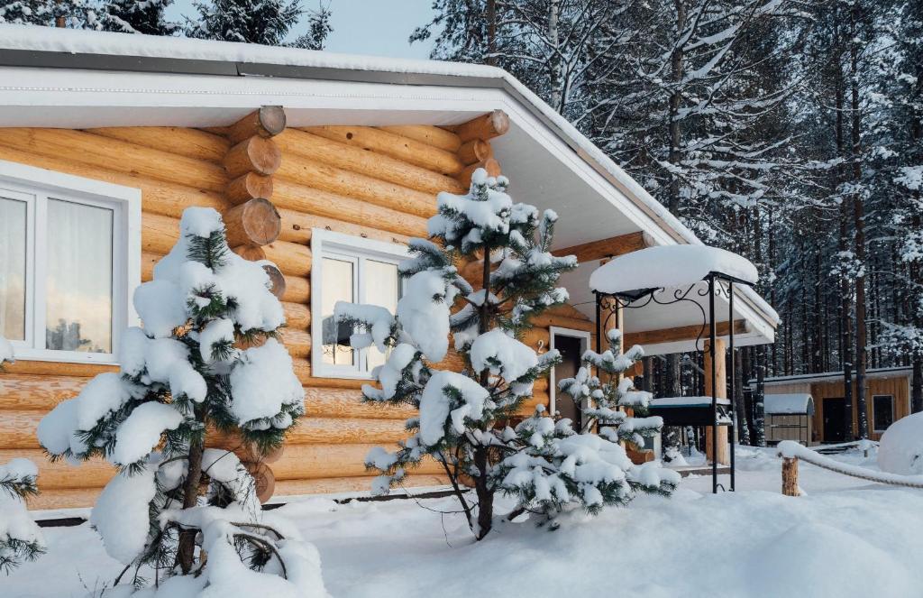 База отдыха Пикник зимой