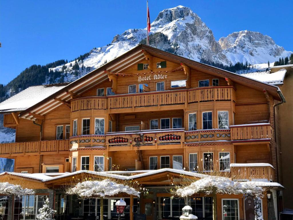 Chalet Hotel Adler im Winter