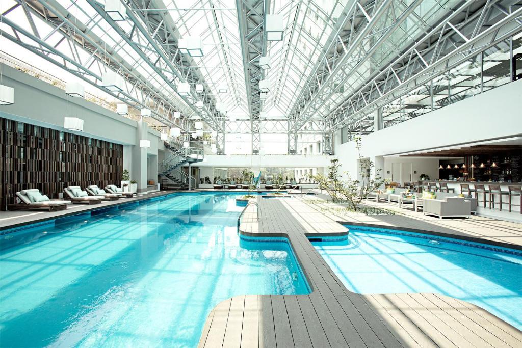 The swimming pool at or near Grand Tikal Futura Hotel