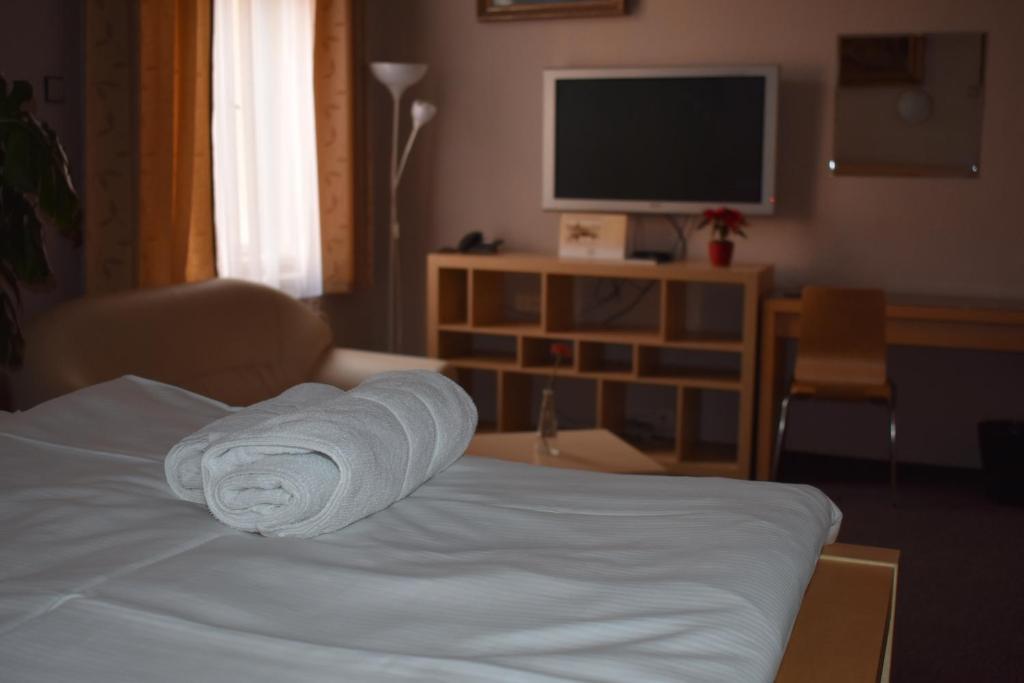 TV a/nebo společenská místnost v ubytování Hotel Zlatá Štika