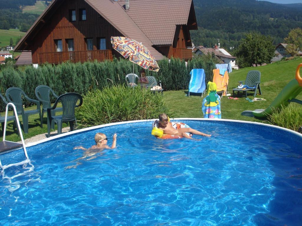 Der Swimmingpool an oder in der Nähe von Penzion Seidl