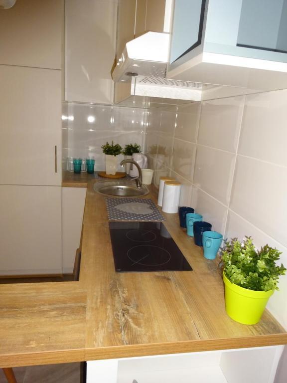 Kuchnia lub aneks kuchenny w obiekcie Apartament Nikola