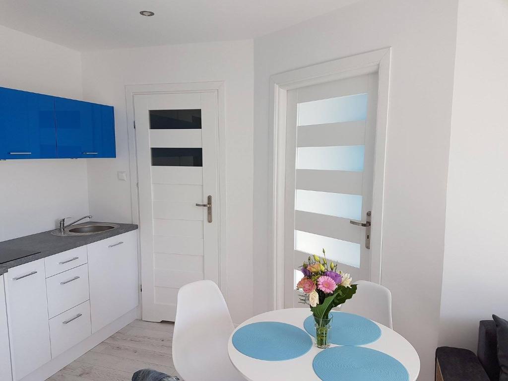 Kuchnia lub aneks kuchenny w obiekcie Apartamenty Baltico Ustka