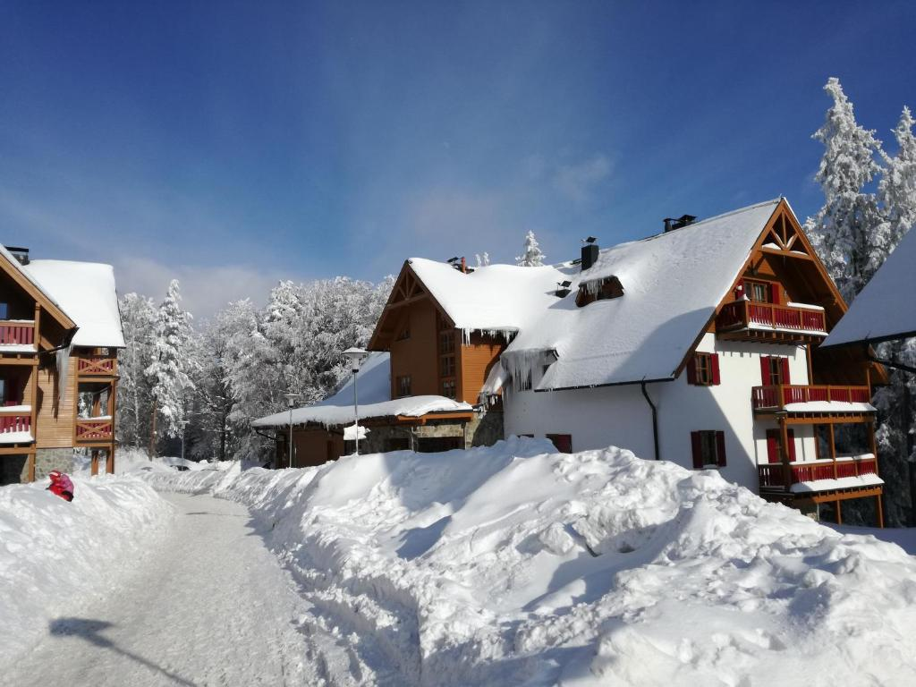 Holiday Apartment Bolfenk during the winter