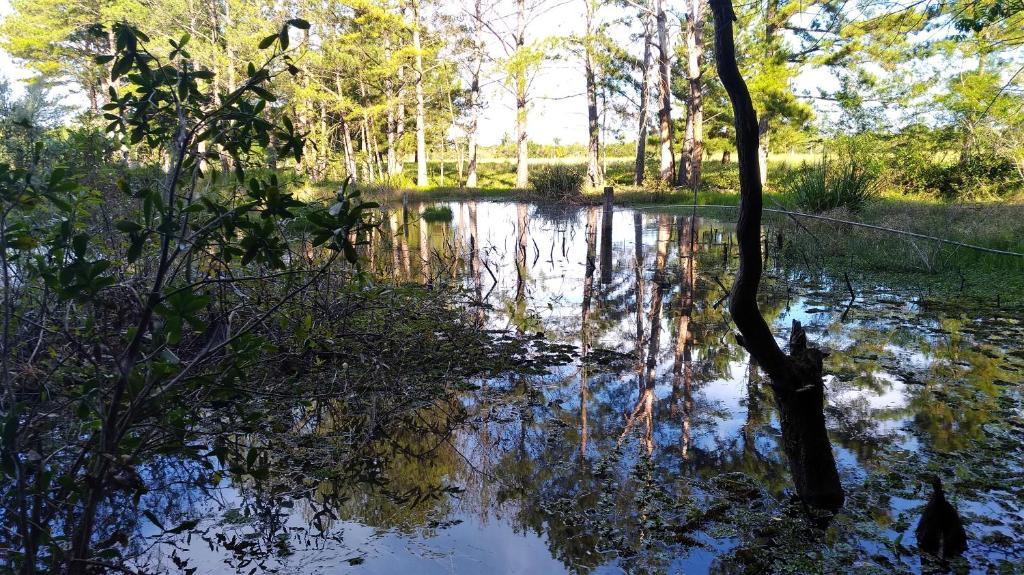 Uma vista do lago perto da hospedagem domiciliar
