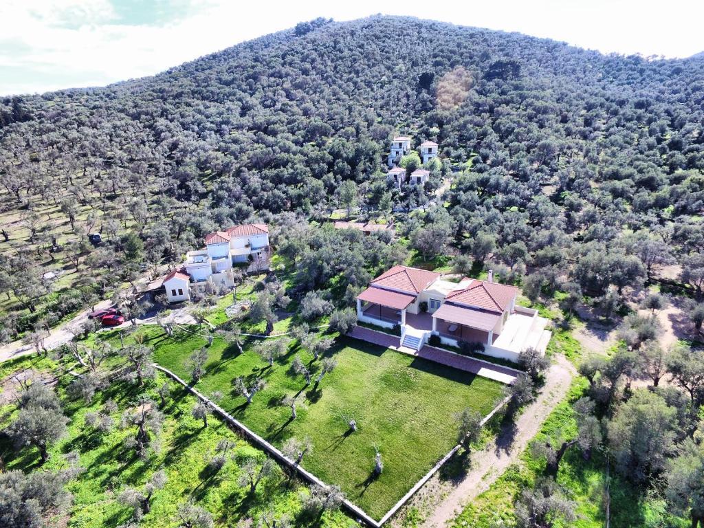 Een luchtfoto van Gera's Olive Grove - Elaionas tis Geras