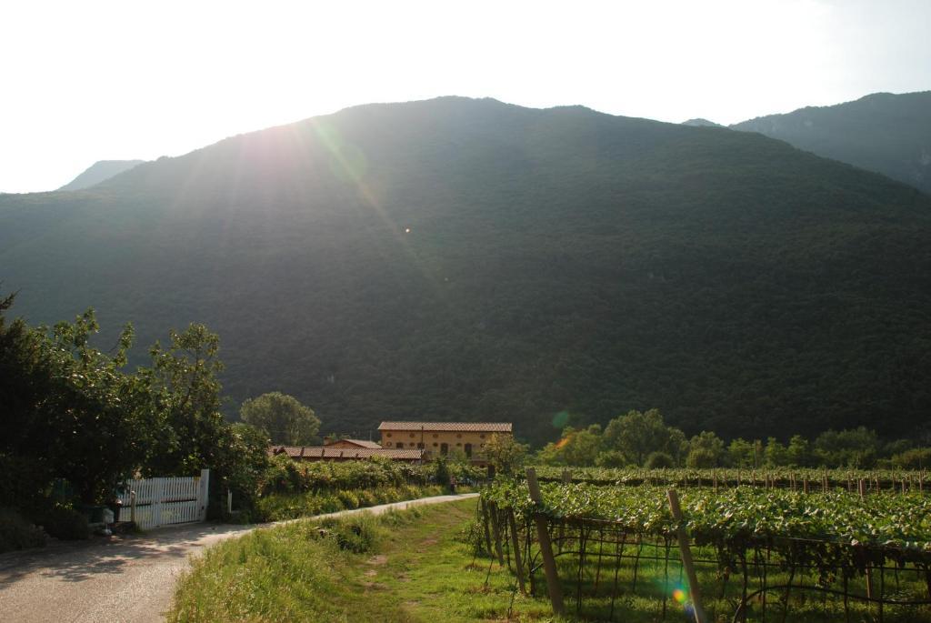 Ein allgemeiner Bergblick oder ein Berglick von des Bauernhofs aus