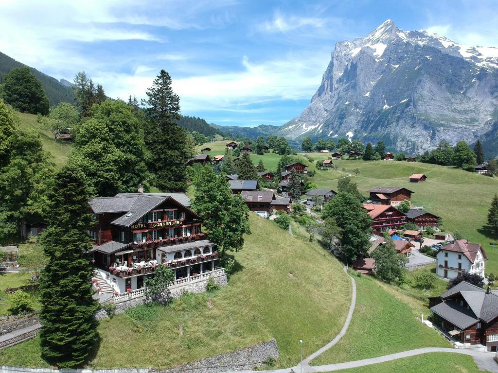 Hotel Sonnenberg с высоты птичьего полета