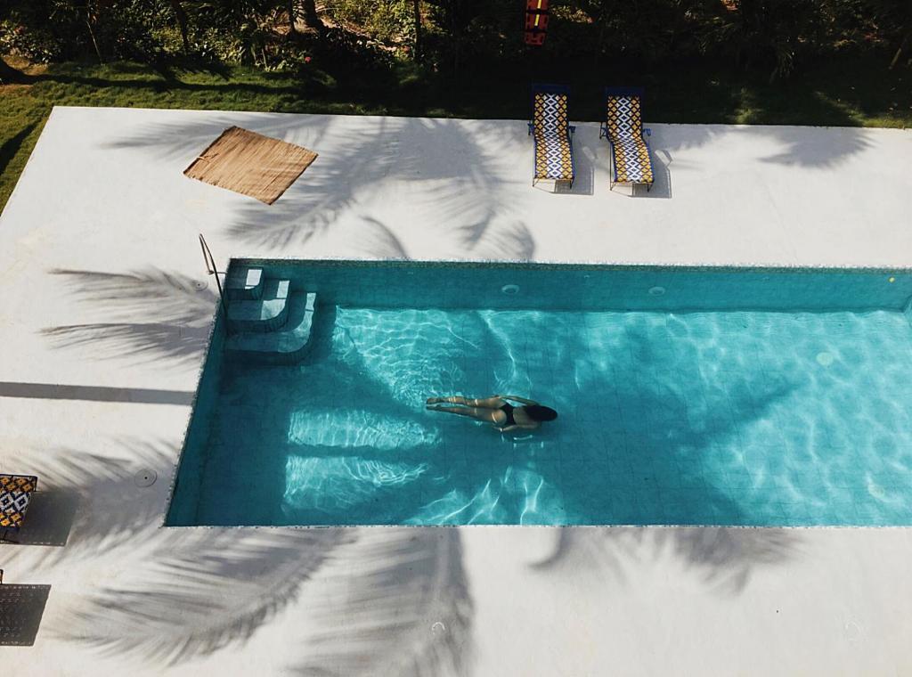 Uitzicht op het zwembad bij Casa del Pavo Real Boutique Hostel of in de buurt