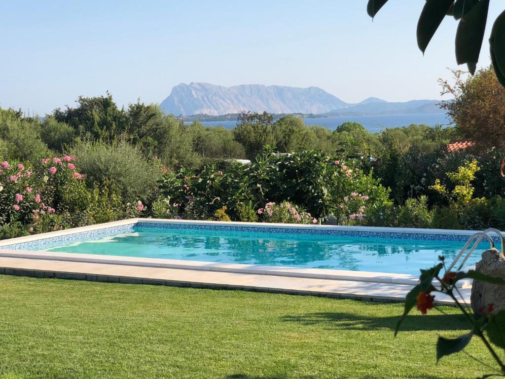 Piscina di Villa Tavolara -Private Pool, to the beach on foot, sea view, all inclusive o nelle vicinanze