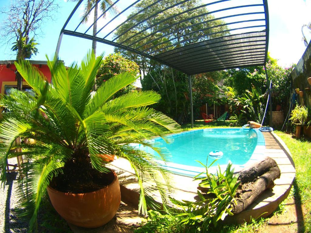 The swimming pool at or near El Nómada Hostel