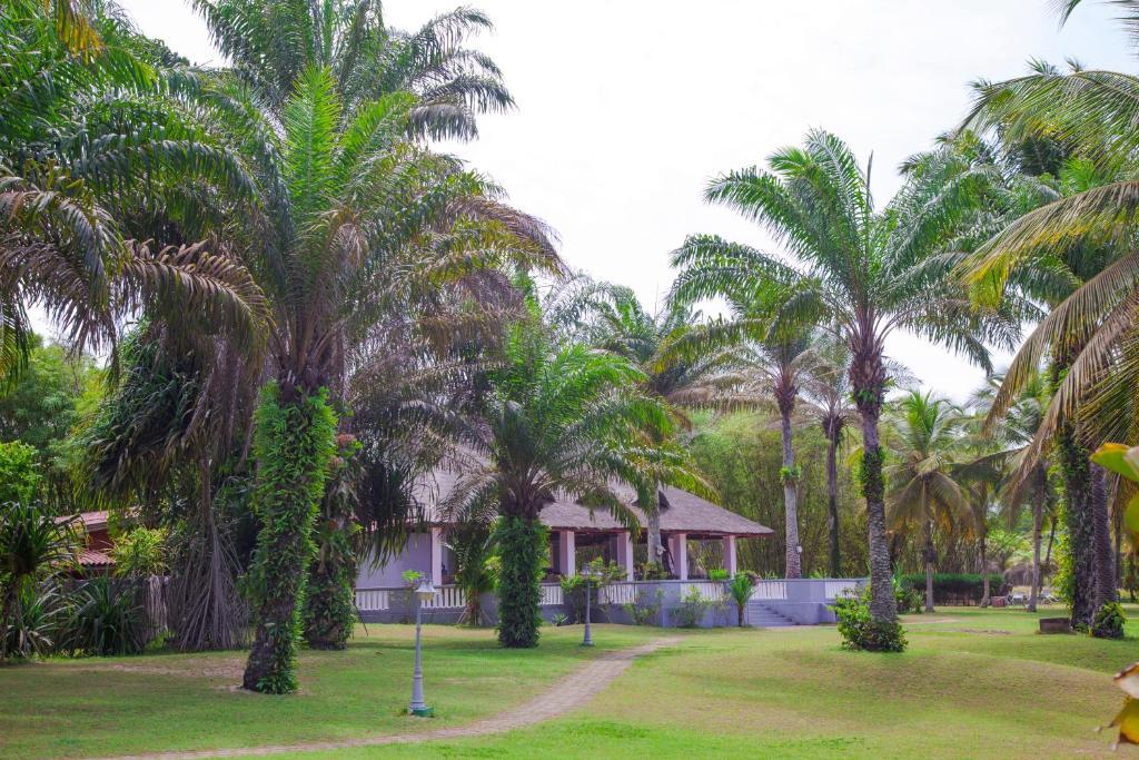 African Queen Lodge