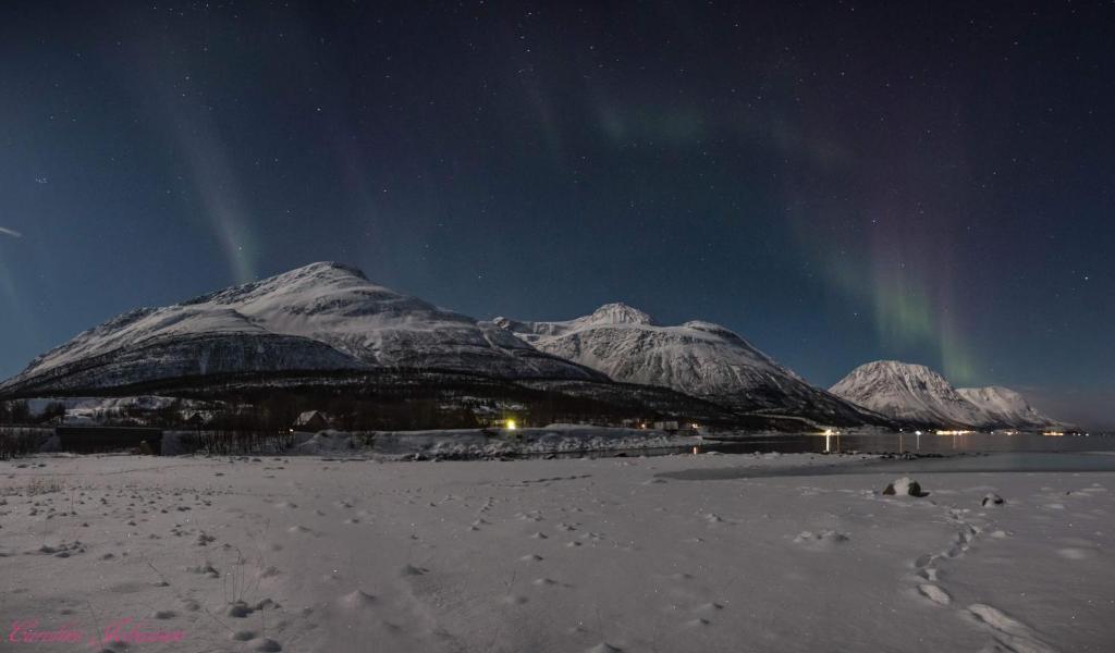 Sjursnes Fjordferie om vinteren