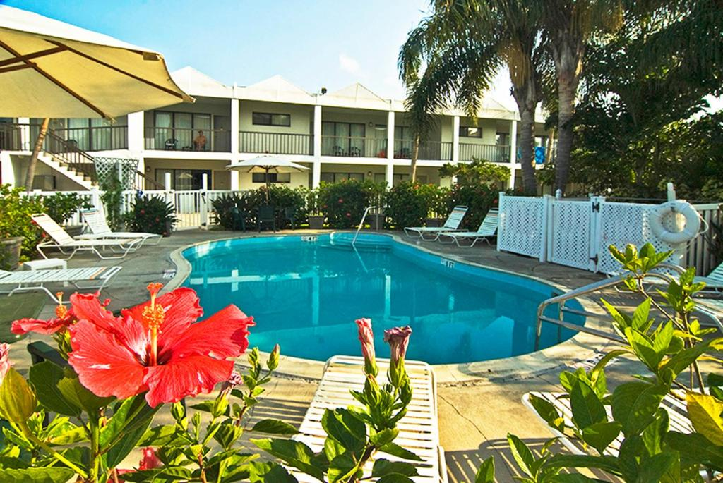 The swimming pool at or near The Beachcomber St. Pete Beach Resort & Hotel