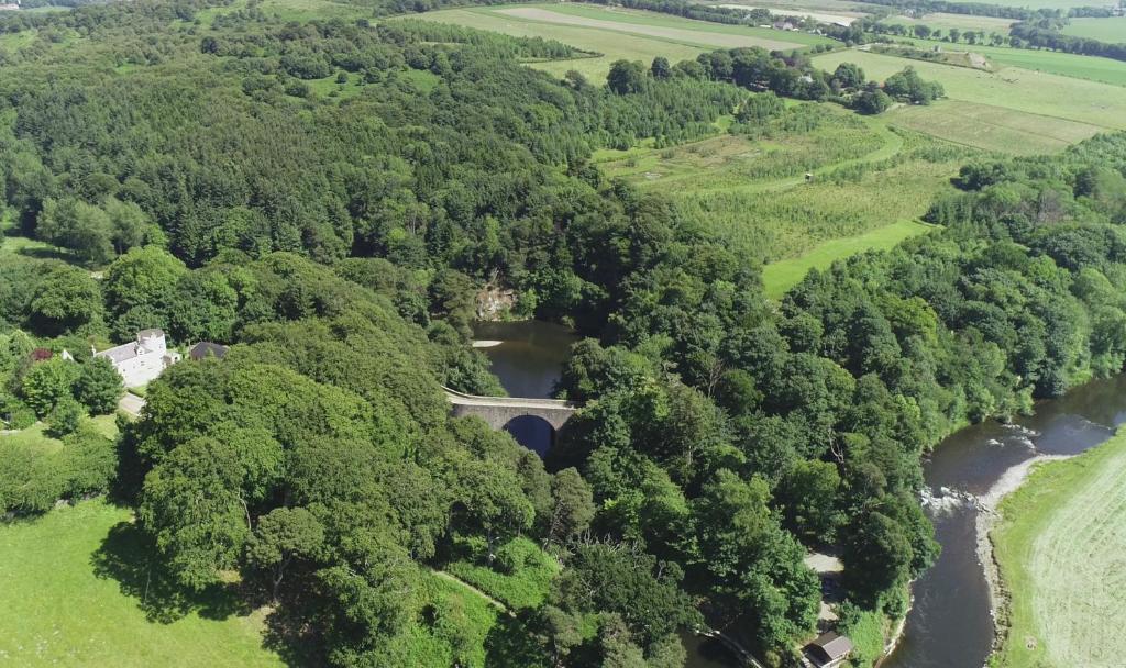 A bird's-eye view of Craig Cottage