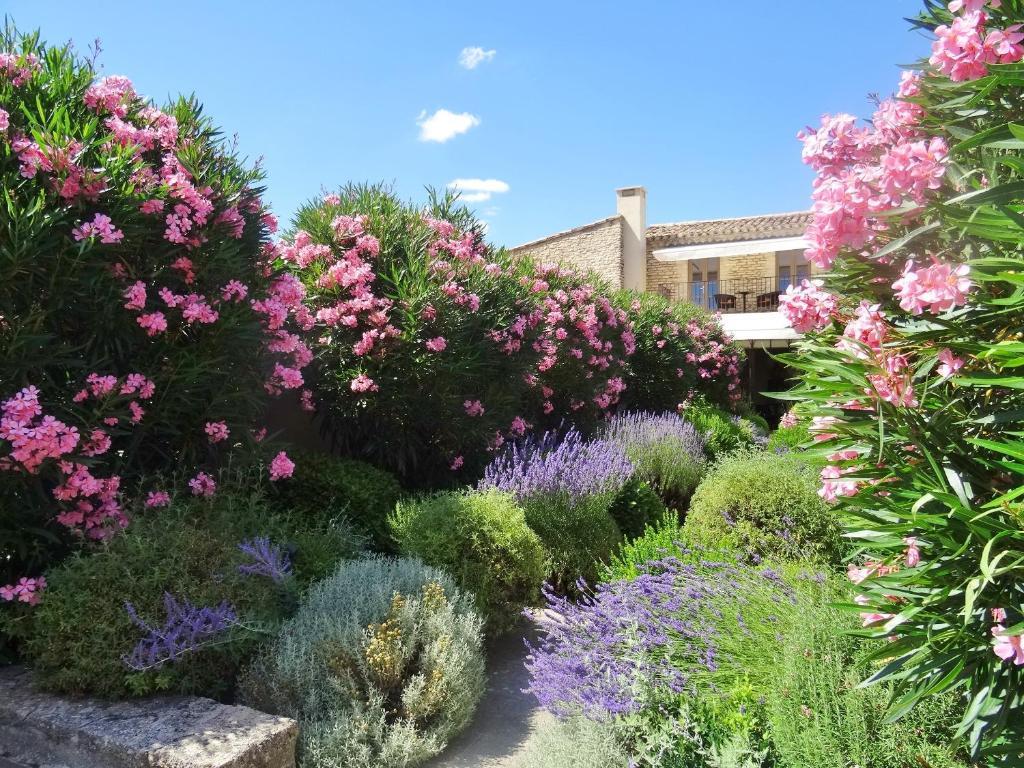 A garden outside Le Jas de Gordes