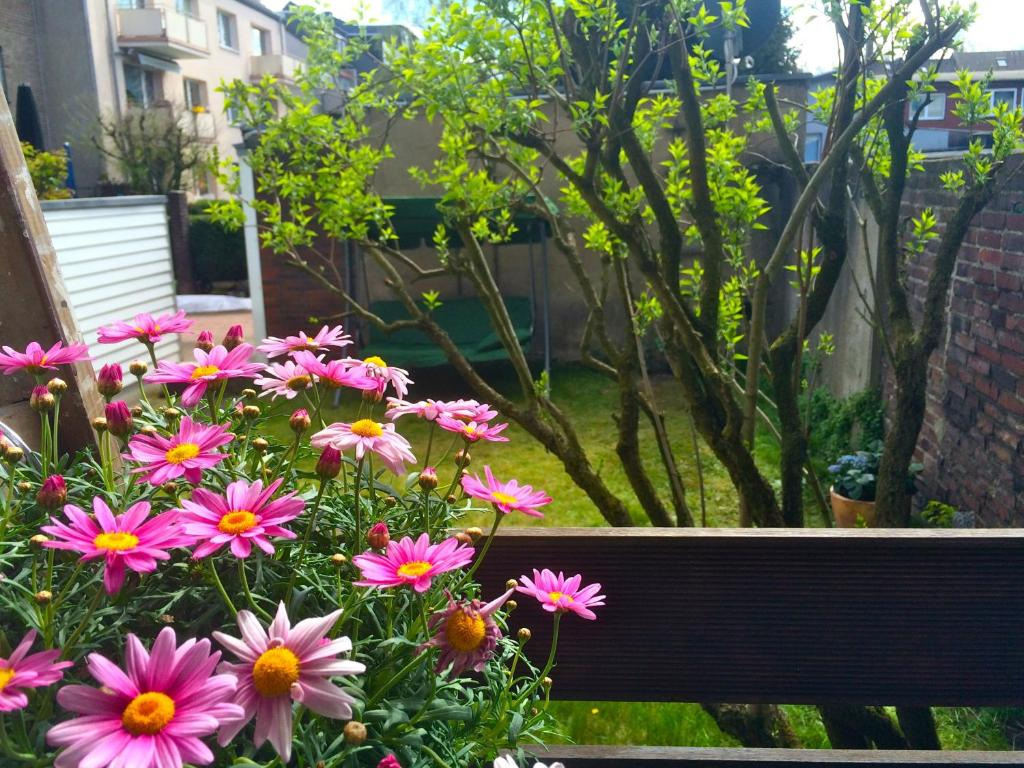 A garden outside Charmant Wohnen