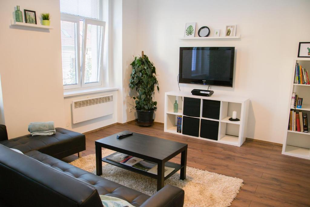 A television and/or entertainment center at Sunny Aircon Apartment in the Centre of Slaný