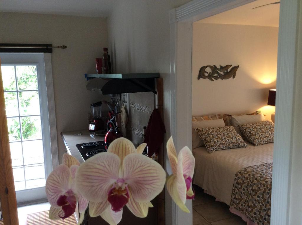 A bed or beds in a room at Mediteranean style Ohana Rental / Garden Bungalow in Pahoa
