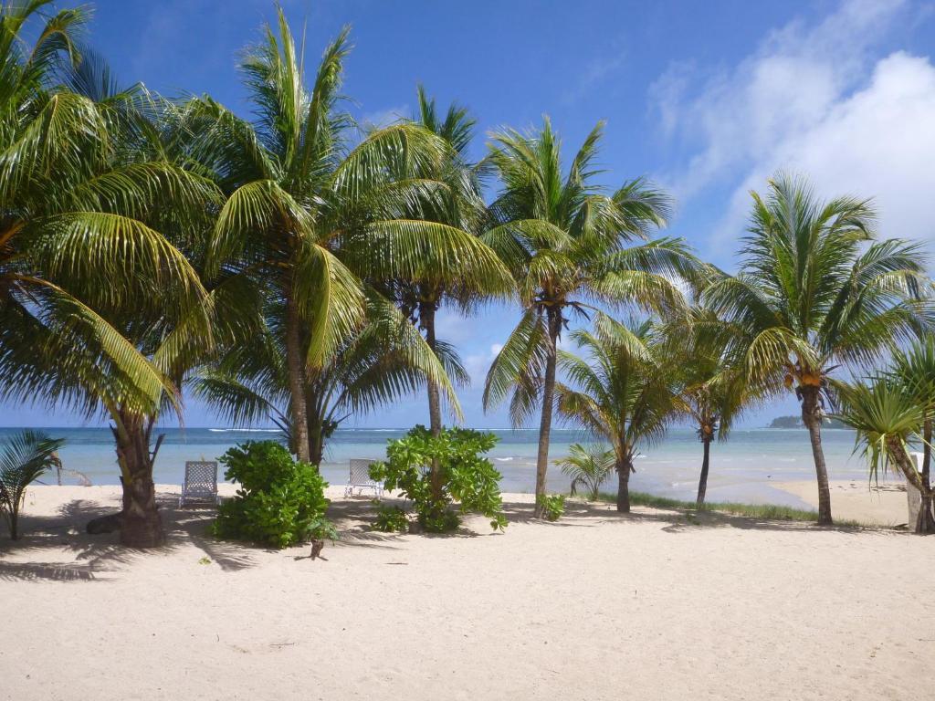A beach at or near a vendégházakat