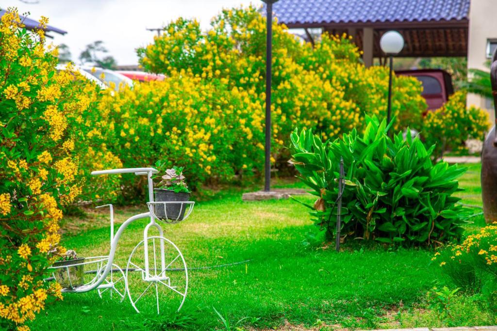 A garden outside Hotel Fazenda Triunfo