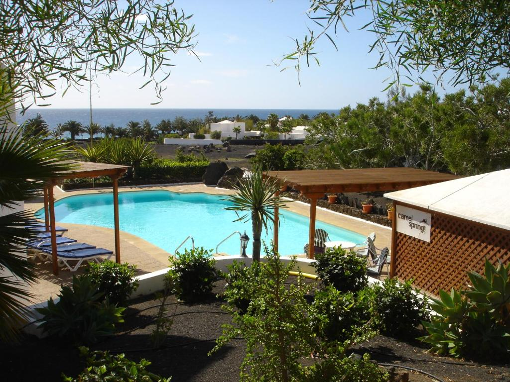 Ein Blick auf den Pool von der Unterkunft Camel's Spring Club oder aus der Nähe