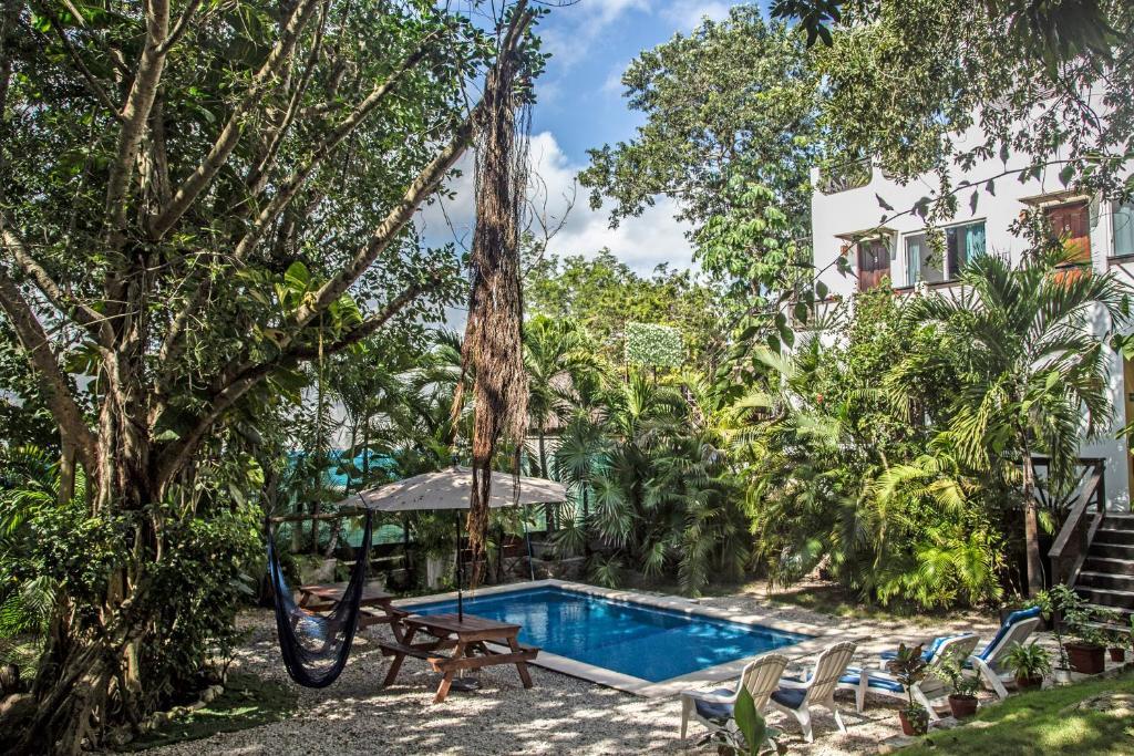 Бассейн в Mango Tulum Hotel или поблизости
