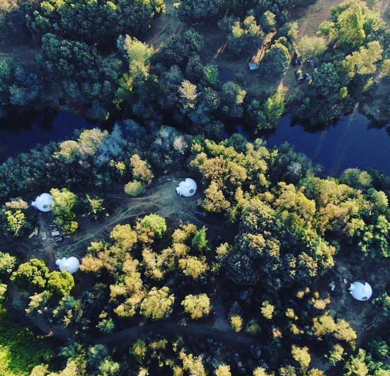 Domos Bosque Escondido