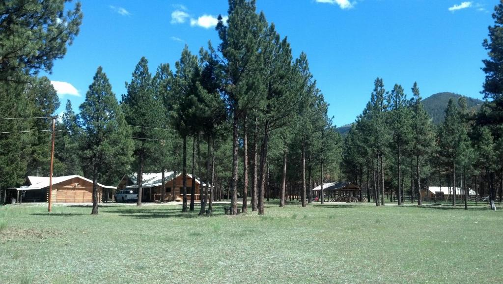 Coal Creek Lodge Alta Usa Booking Com