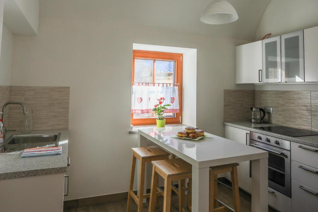Kuhinja oz. manjša kuhinja v nastanitvi Apartmaji Tina