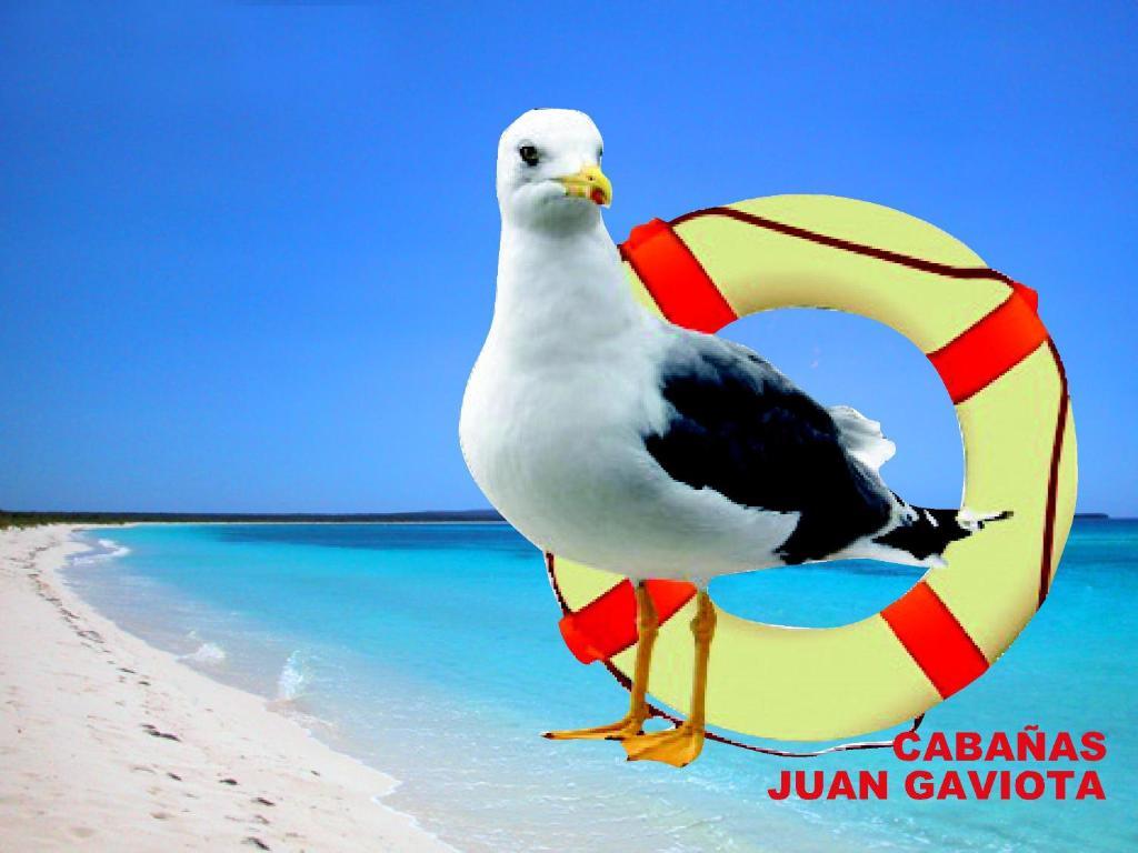 Cabañas Juan Gaviota