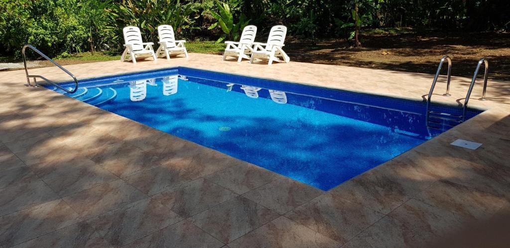 The swimming pool at or near Ciudad Perdida EcoLodge