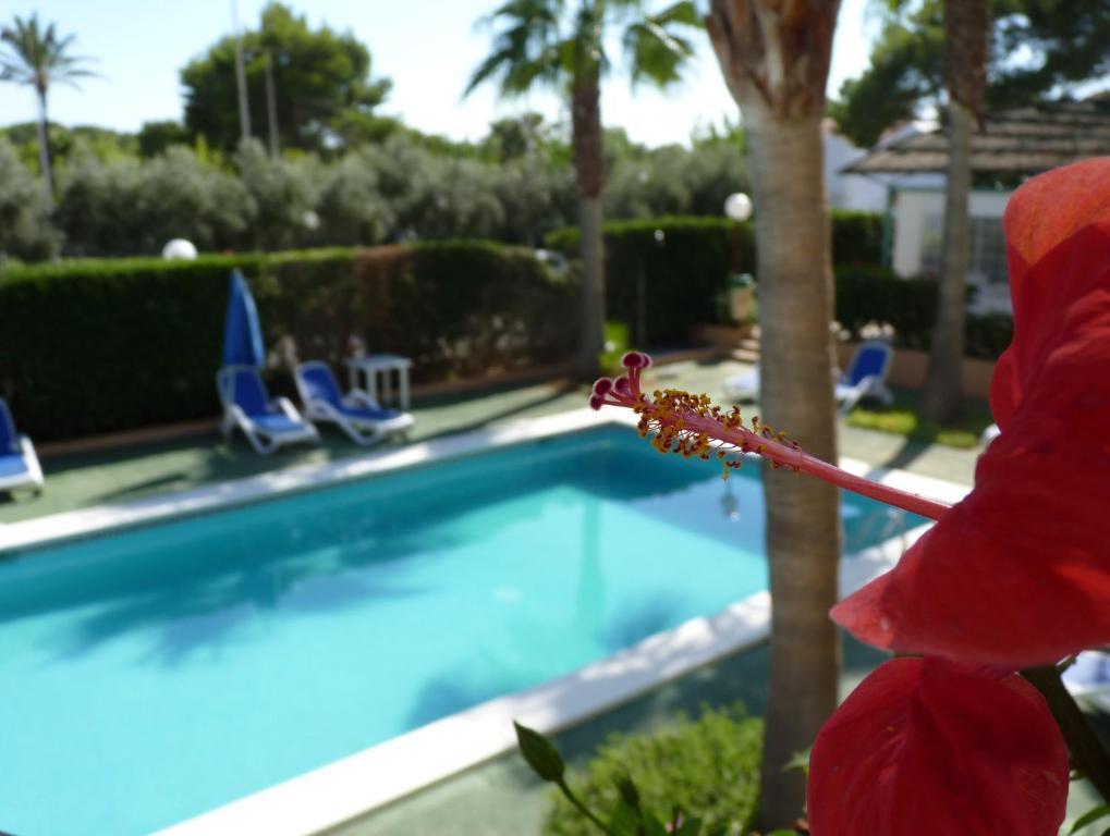 The swimming pool at or near Apartamentos Vista Playa I