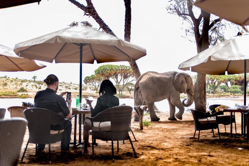 Restaurant ou autre lieu de restauration dans l'établissement Elephant Bedroom Camp - Samburu