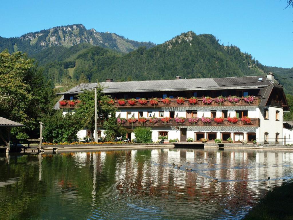 Der Swimmingpool an oder in der Nähe von Wieselmühle Forellenhof