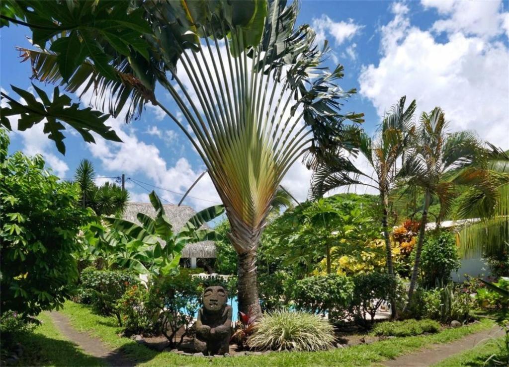 Сад в Pension De La Plage