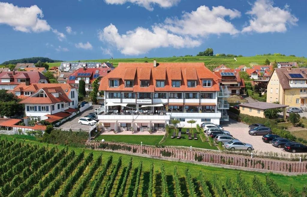 Hotel Hansjakob Hagnau, Germany
