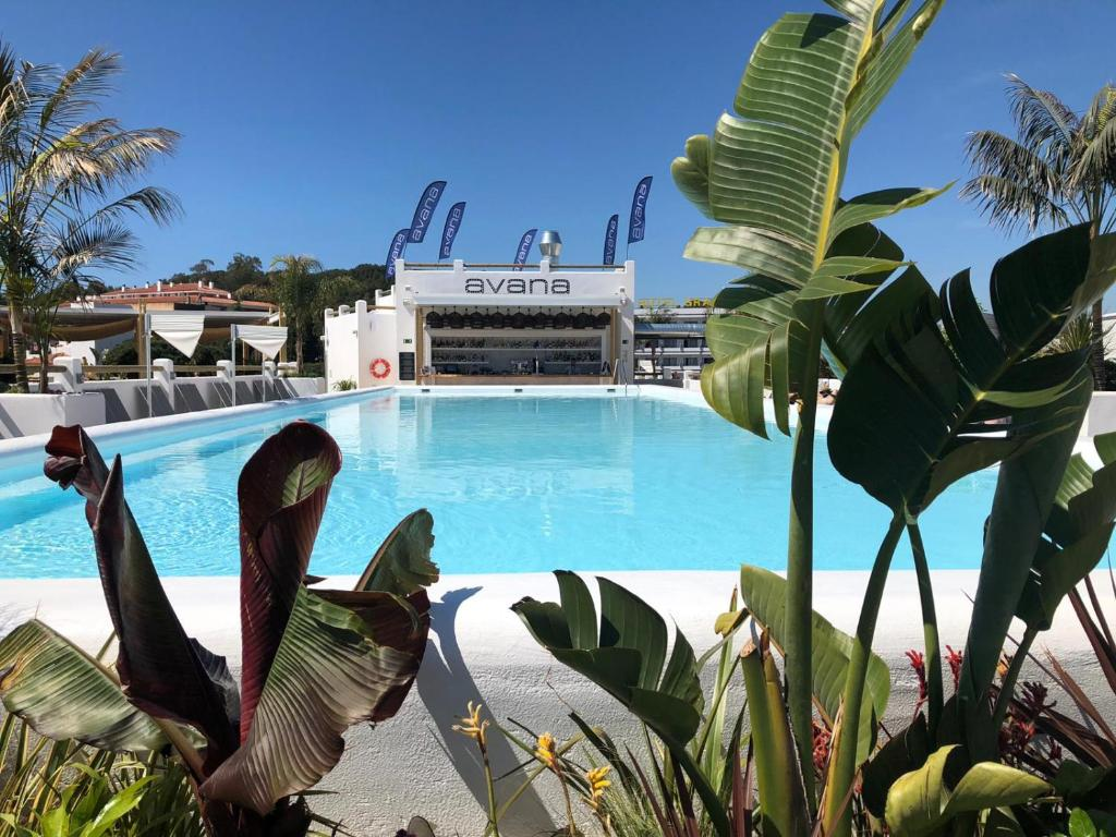 The swimming pool at or near Delamar 4*Sup-Adults only (18+)