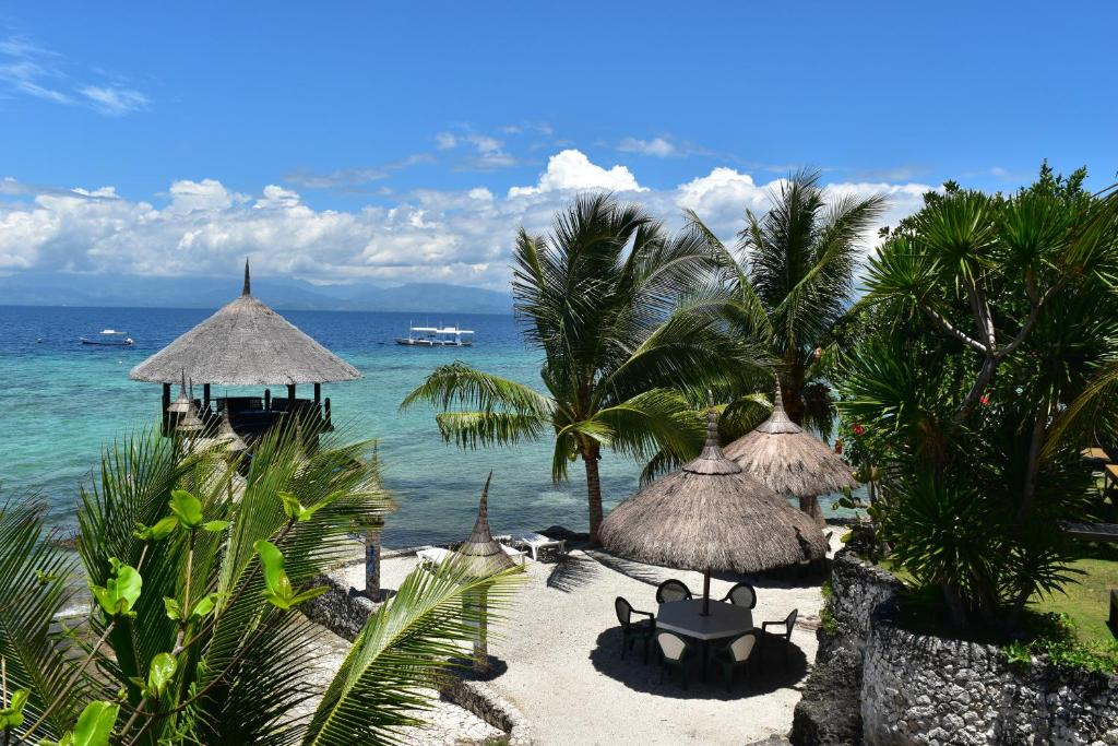 A view of the pool at Dolphin House Resort Moalboal or nearby