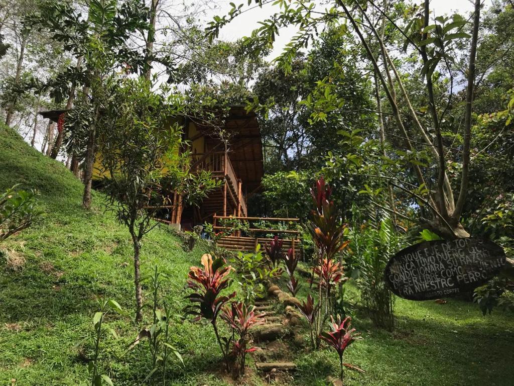 A garden outside ESTACION PARAISO DE DANTAS