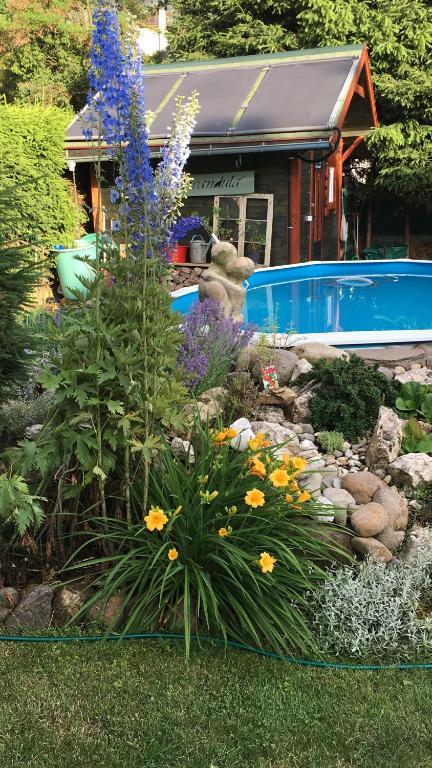 The swimming pool at or near Villa Vita