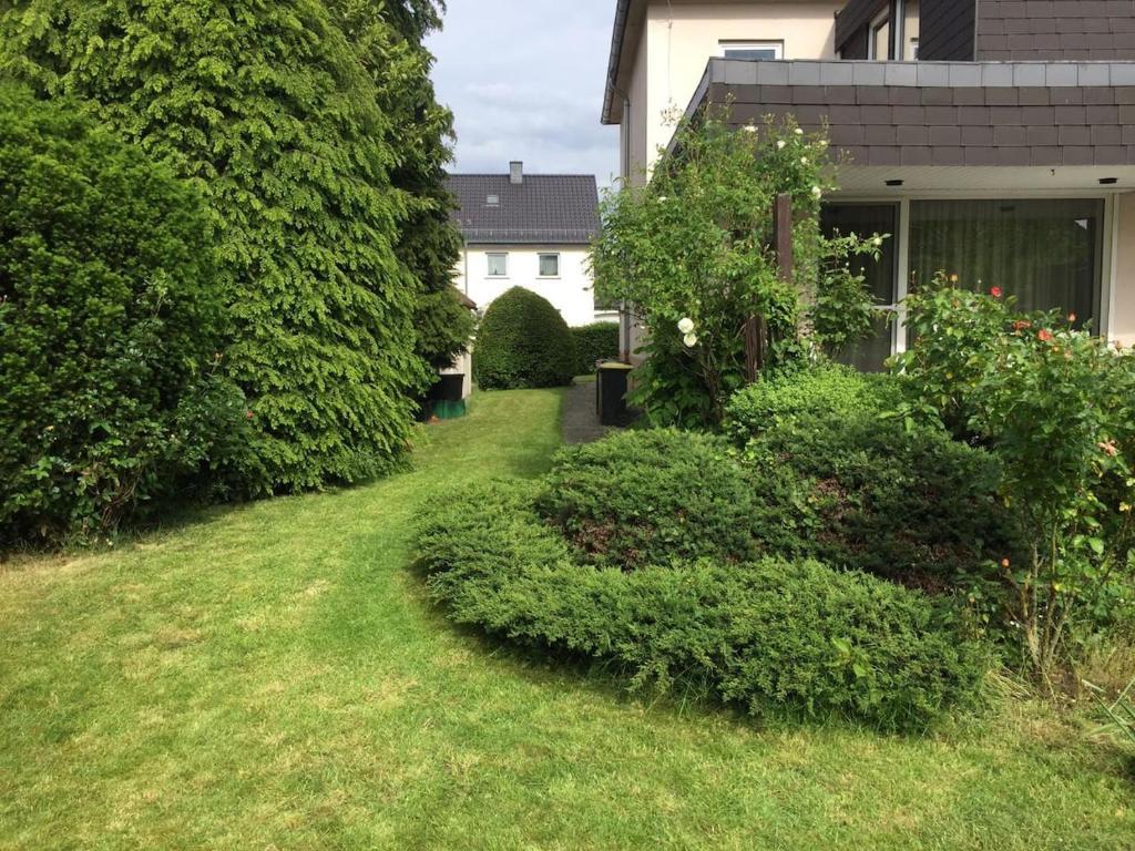 A garden outside Entire house, quiet city location, garden, parking