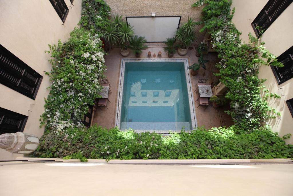Вид на бассейн в Riad Dar Haven или окрестностях