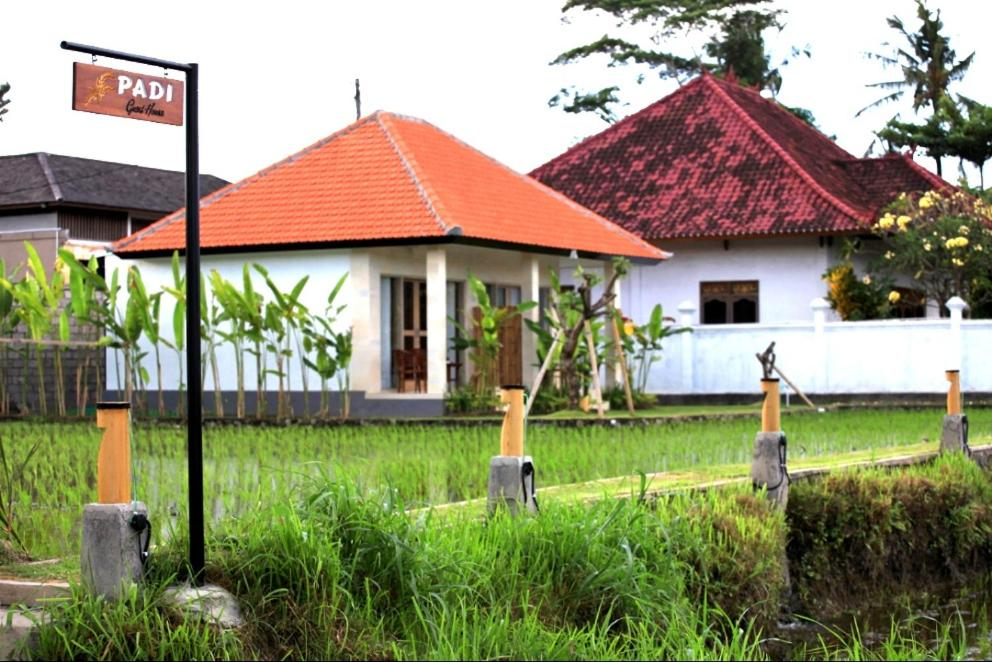 Padi guest house
