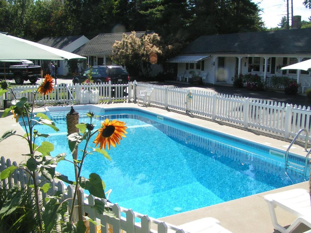 The swimming pool at or near Wills Inn - Bartlett