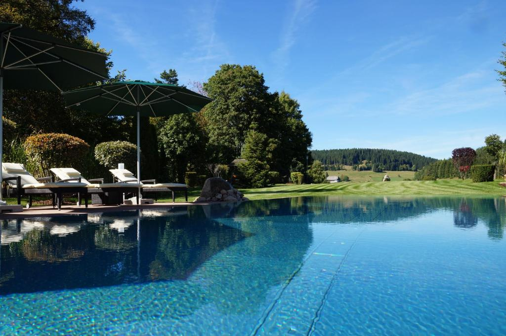 The swimming pool at or near Parkhotel Flora am Schluchsee