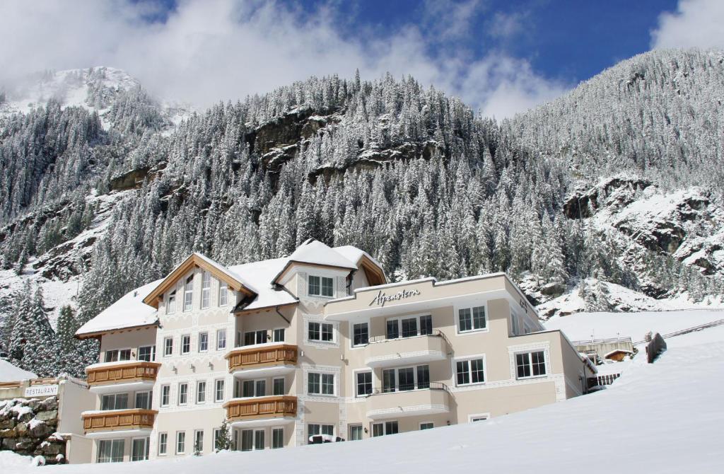 Alpenstern during the winter